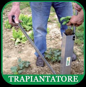 trapiantatore